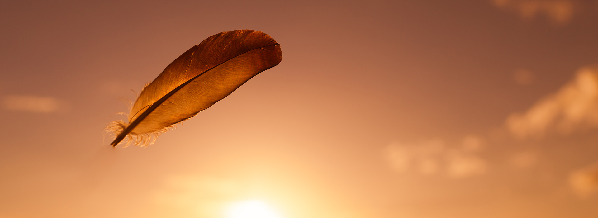 Feather floating in the sky.